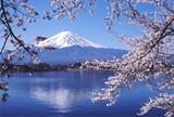 日本富士山温泉